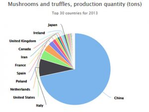 World Mushroom Production Chart